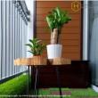 https://www.honeycomb.vn/vnt_upload/product/07_2019/thumbs/420_vinhomes_wwwhoneycombvn_VH244_8_result.jpg